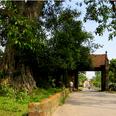 Le village de Duong Lam