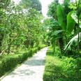 L'éco-village de Thuy Bieu