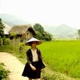 Le village de Ha Thanh