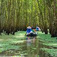 Excursion dans la Forêt de Tra Su
