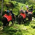 Le parc national de Phuket