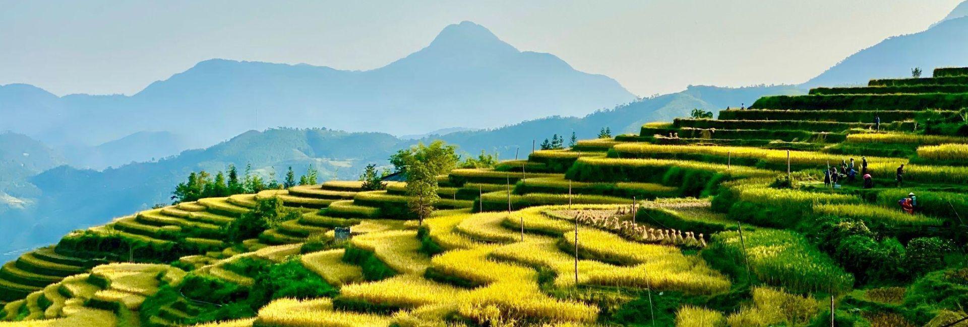 Mu Cang Chai Insolite | Visite en groupe | À partir de 231$
