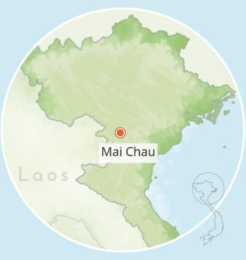 Chez Cuong