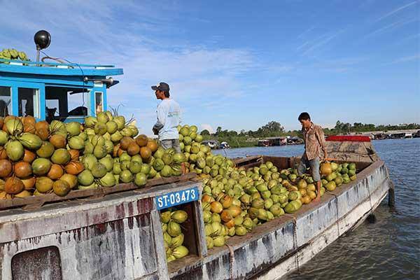 Delta du Mekong Asiatica Travel