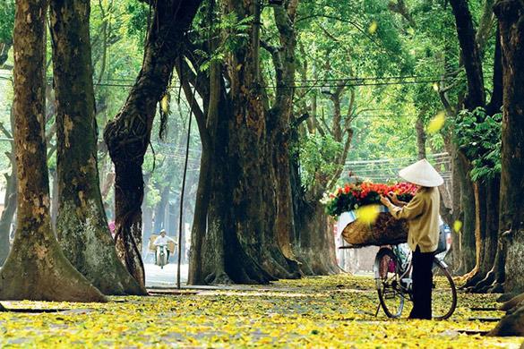 Découverte du Vietnam en automne