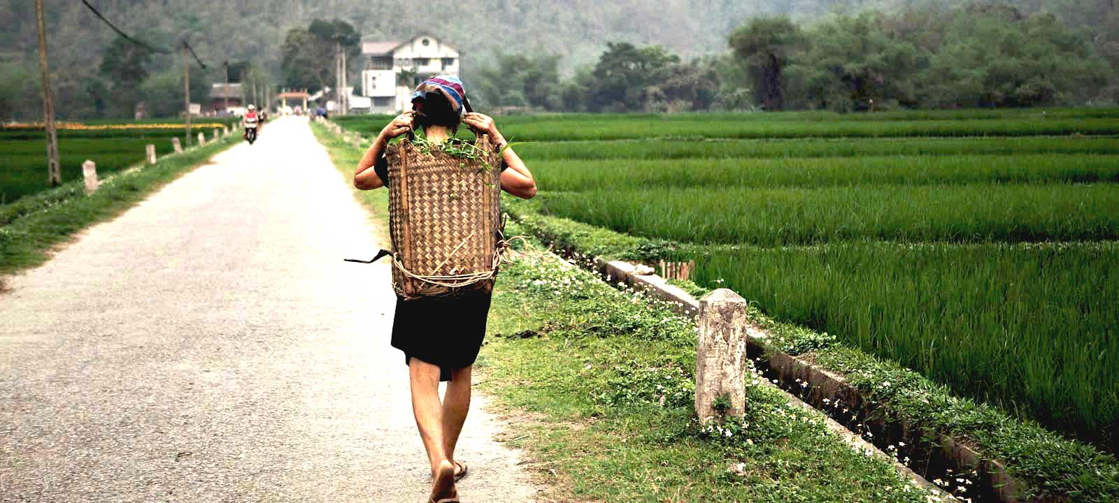 Visa du Vietnam