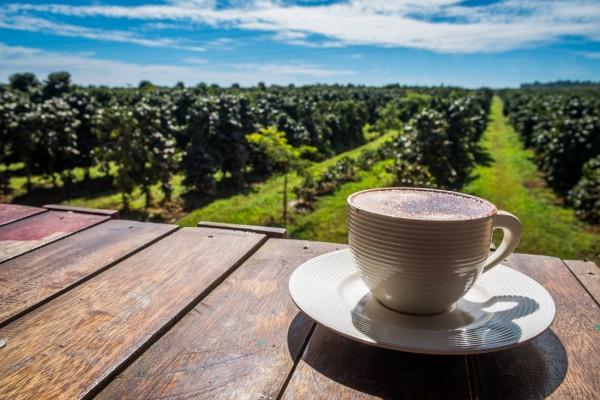 Café du Laos