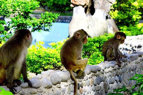 Les 10 sites touristiques les plus visités de Nha Trang
