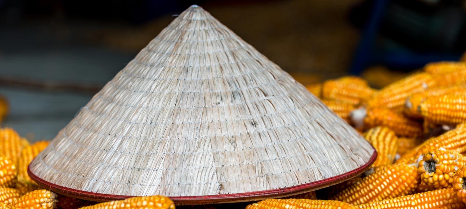 A la découverte des chapeaux coniques du village Chuong