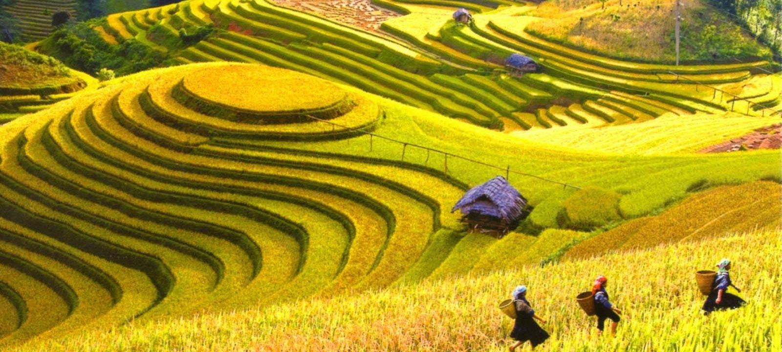 Le guide complet de Ha Giang