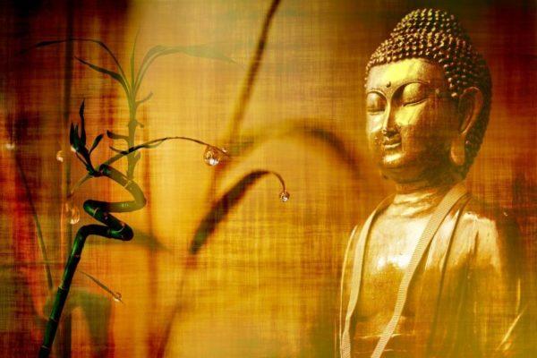 La fête d'anniversaire de Bouddha