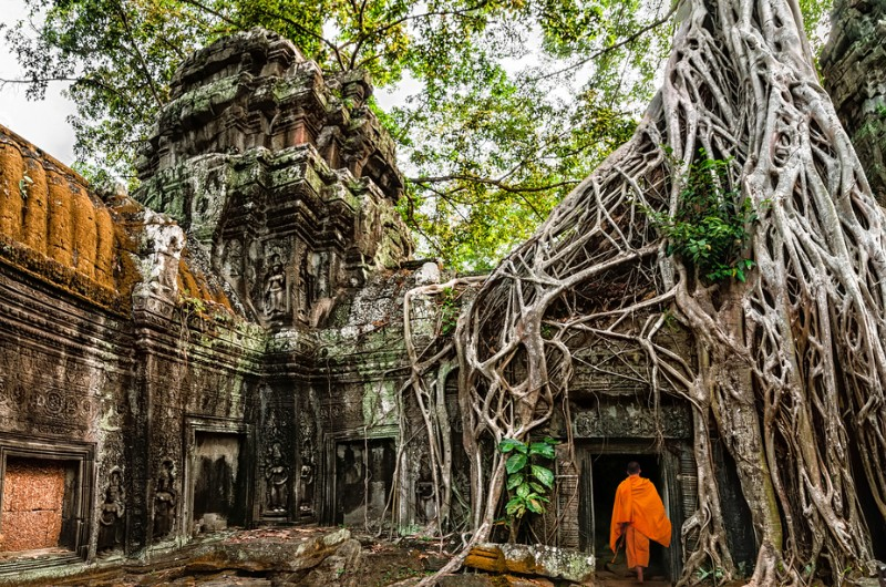 siem reap, cambodge, voyage, asiatica travel, temple, angkor, ta prohm
